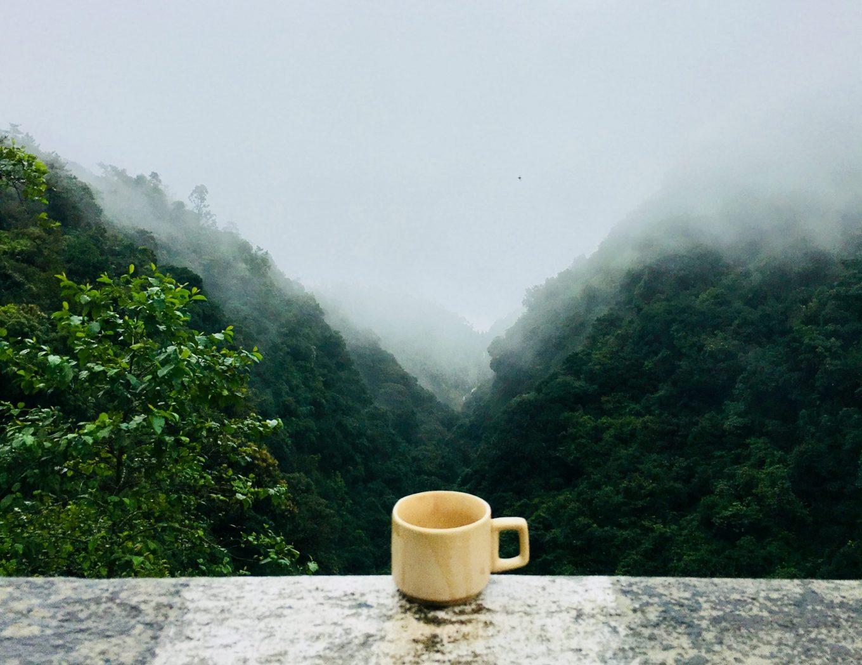 ceai la munte